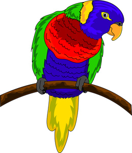Parakeet clipart #3, Download drawings