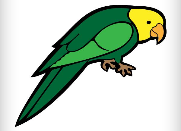 Parakeet clipart #1, Download drawings
