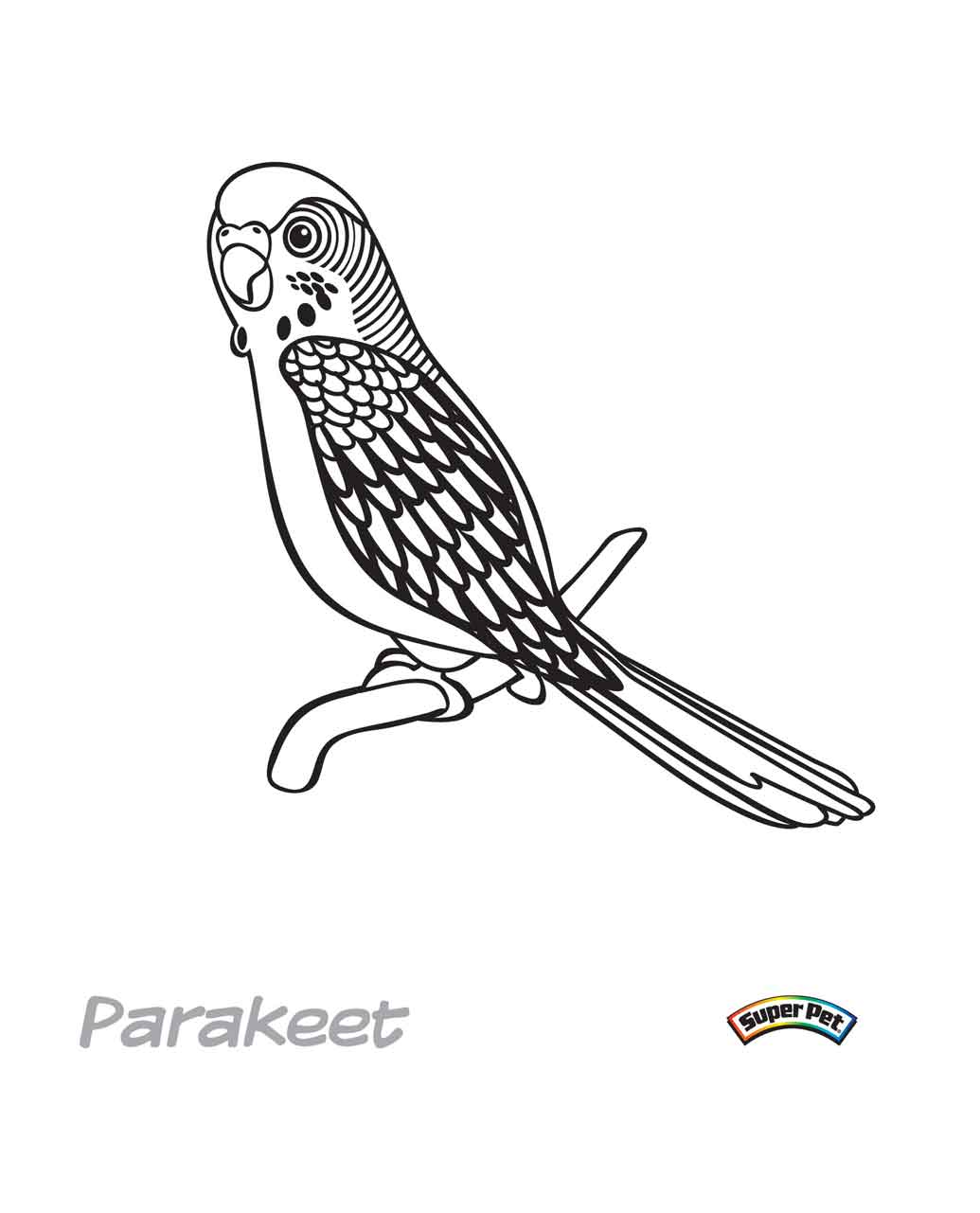 Parakeet coloring #16, Download drawings