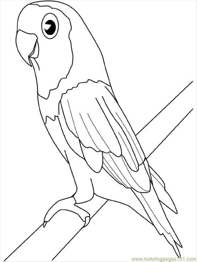 Parakeet coloring #12, Download drawings