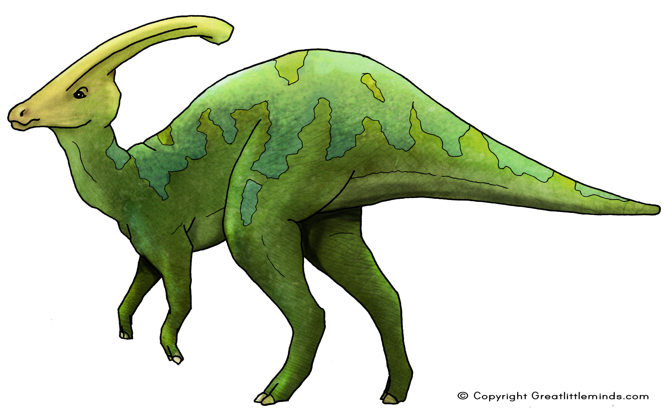 Parasaurolophus clipart #2, Download drawings