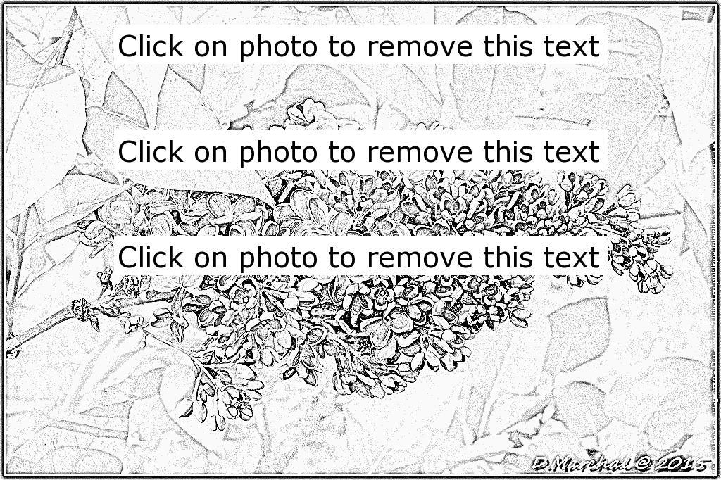 Parc coloring #3, Download drawings