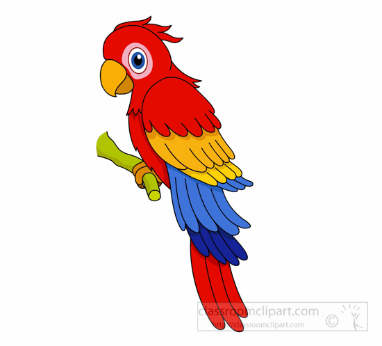 Parrot clipart #17, Download drawings