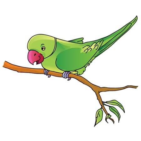 Parrot clipart #13, Download drawings