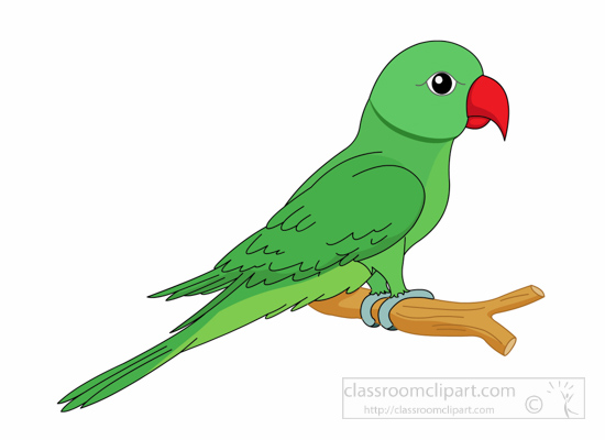 Parrot clipart #18, Download drawings