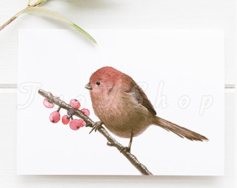 Parrotbill clipart #19, Download drawings