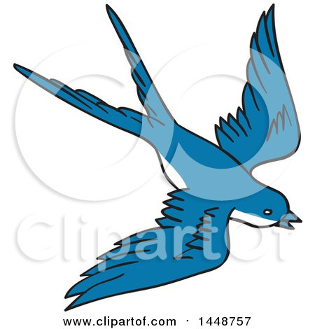 Passerine clipart #19, Download drawings