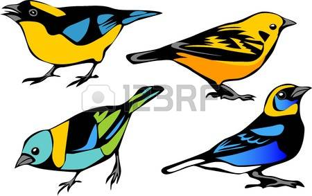 Passerine clipart #18, Download drawings