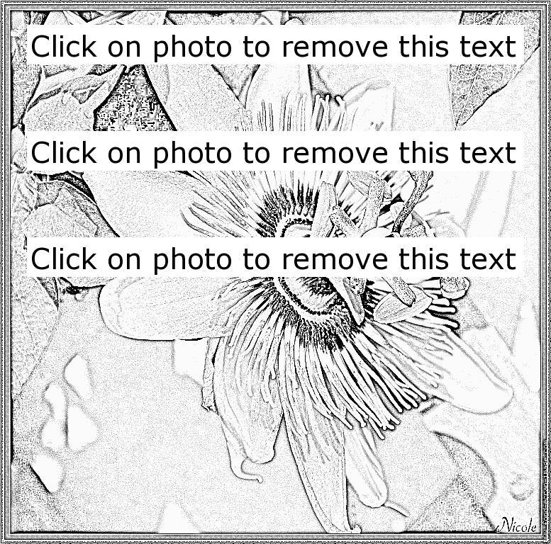 Passiflora coloring #2, Download drawings