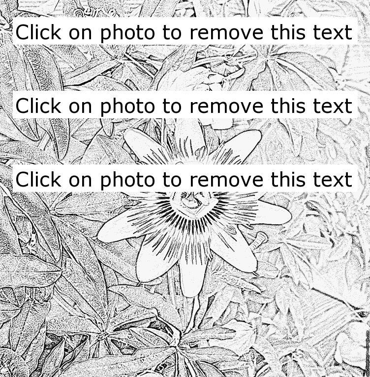 Passiflora coloring #8, Download drawings