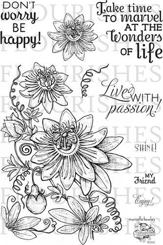 Passiflora coloring #11, Download drawings