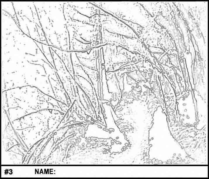 Pathway coloring #14, Download drawings