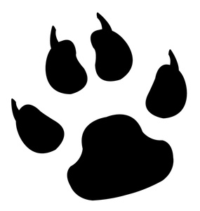 Paw clipart #8, Download drawings