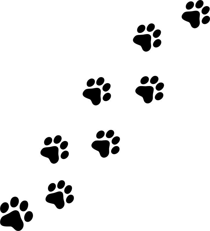 Paw Prints clipart #20, Download drawings