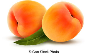 Peach (color) clipart #16, Download drawings