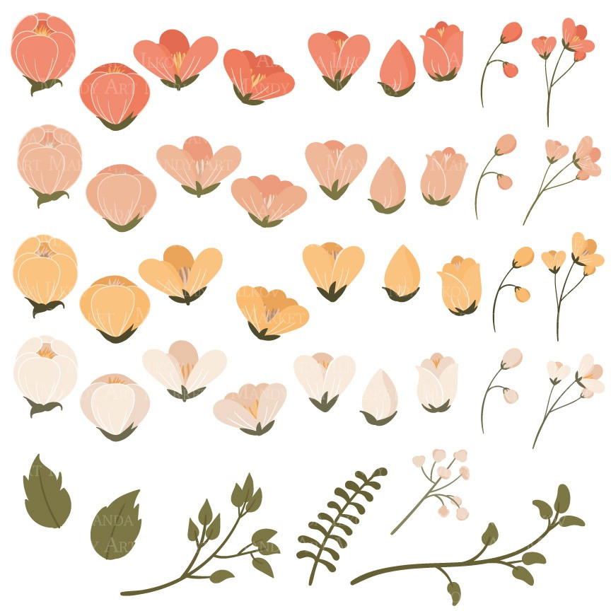 Peach Flower clipart #20, Download drawings