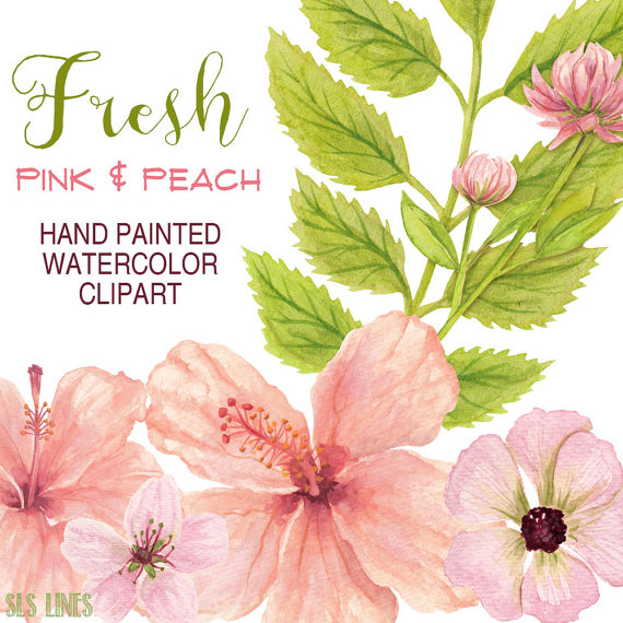 Peach Flower clipart #8, Download drawings