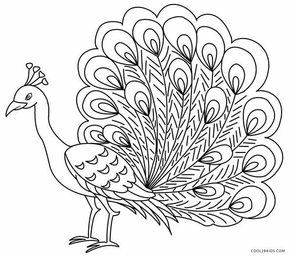 Peacock coloring #15, Download drawings