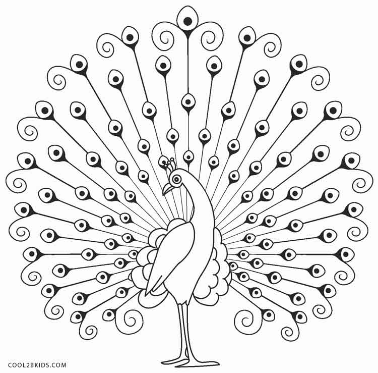 Peacock coloring #12, Download drawings