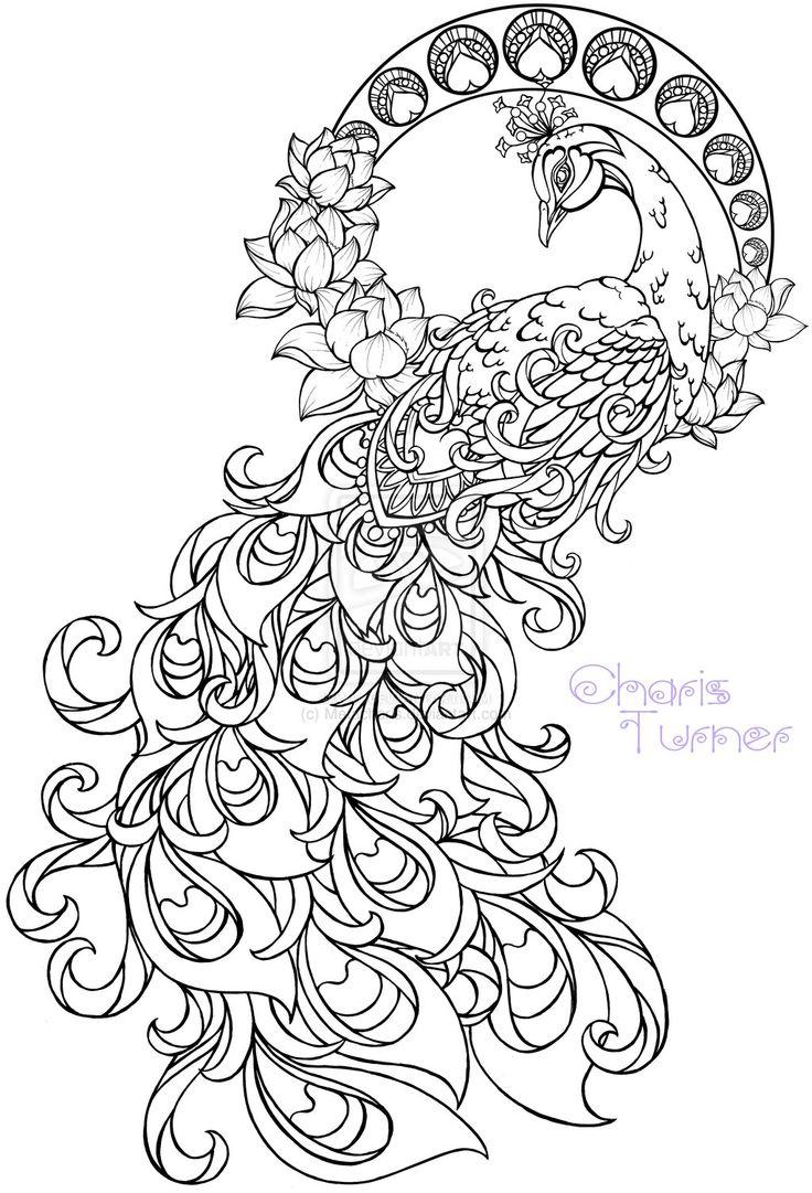 Peacock coloring #8, Download drawings