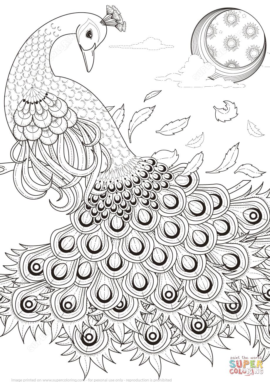 Peacock coloring #6, Download drawings