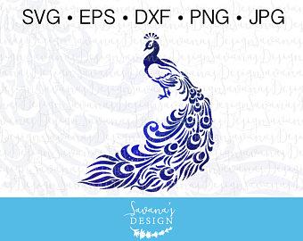 Peacock svg #8, Download drawings