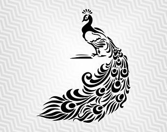 White Peafowl svg #15, Download drawings