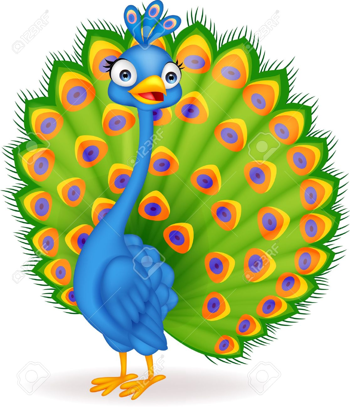 Peafowl clipart #16, Download drawings