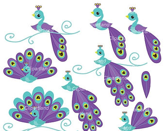 Peafowl clipart #7, Download drawings