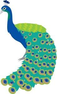 Peafowl clipart #17, Download drawings