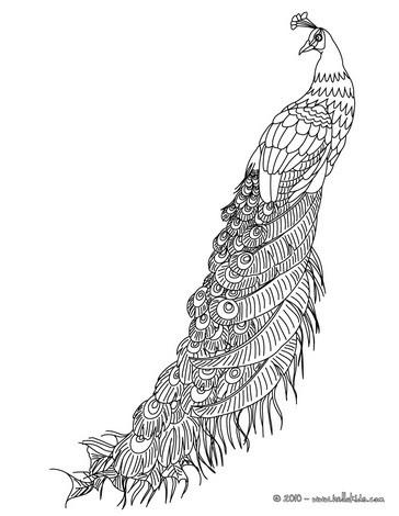 Peafowl coloring #16, Download drawings