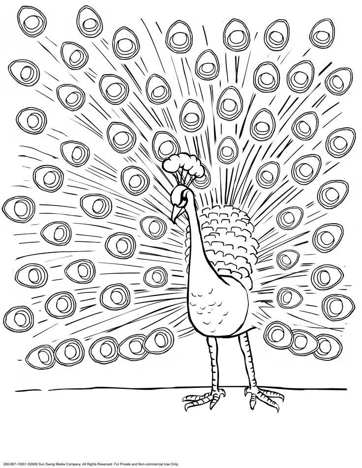 Peafowl coloring #11, Download drawings