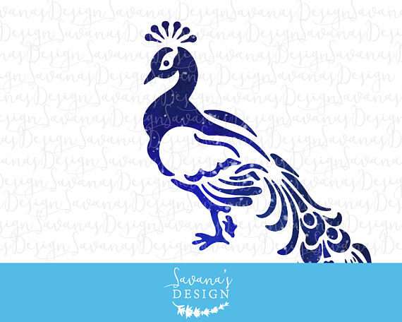 White Peafowl svg #13, Download drawings