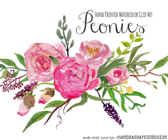 Peony clipart #12, Download drawings