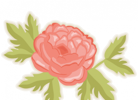 Peony clipart #4, Download drawings