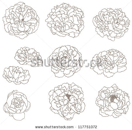 Peony svg #1, Download drawings