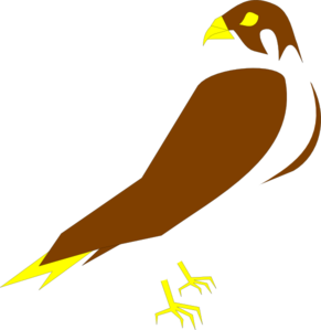Peregrine Falcon clipart #16, Download drawings