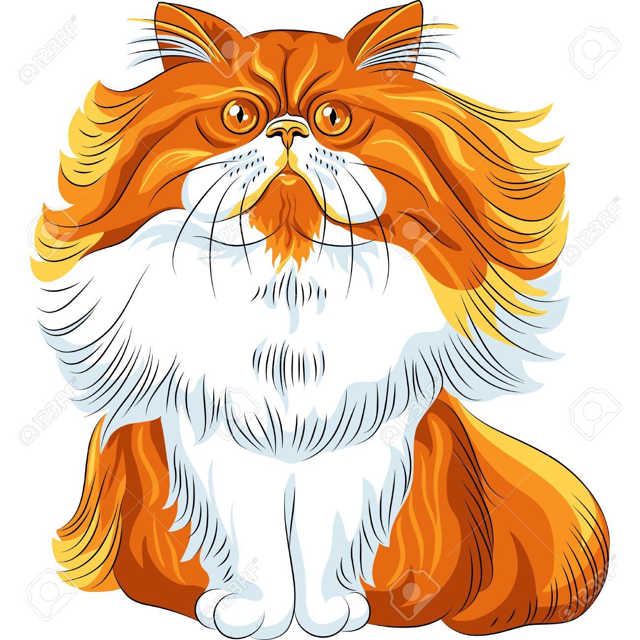 Persian Cat clipart #13, Download drawings