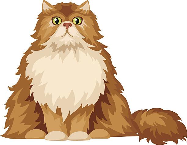 Persian Cat clipart #16, Download drawings