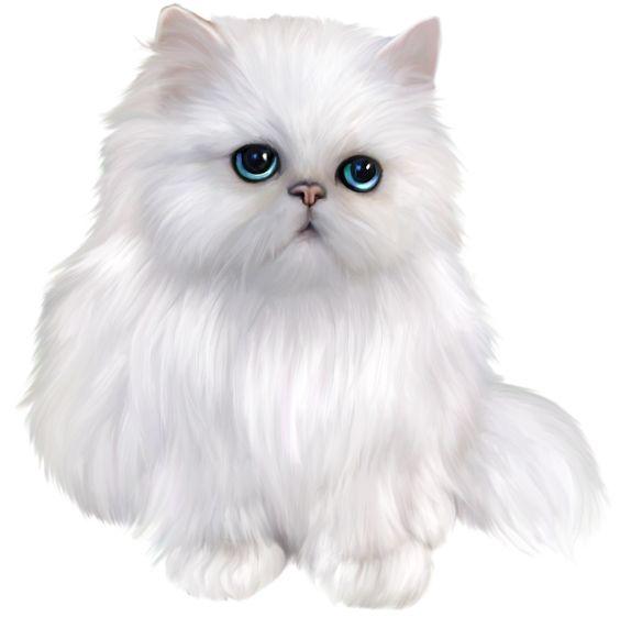 Persian Cat clipart #6, Download drawings