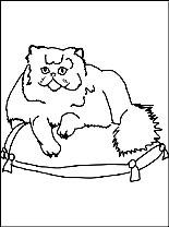 Persian Cat coloring #11, Download drawings