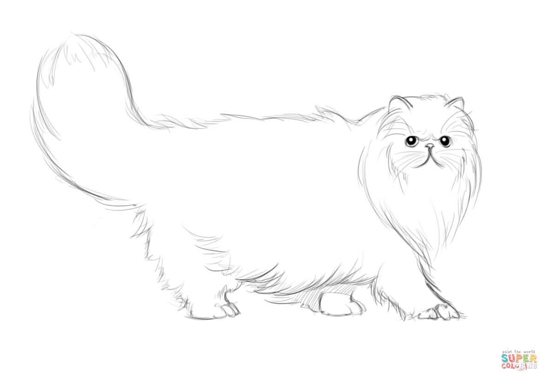 Persian Cat coloring #9, Download drawings