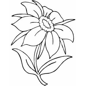 Petals coloring #10, Download drawings