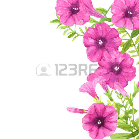 Petunia clipart #7, Download drawings