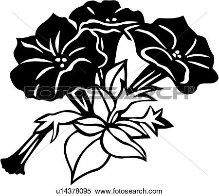 Petunia clipart #12, Download drawings