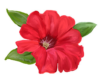 Petunia clipart #10, Download drawings
