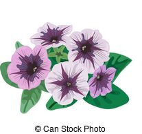 Petunia clipart #3, Download drawings
