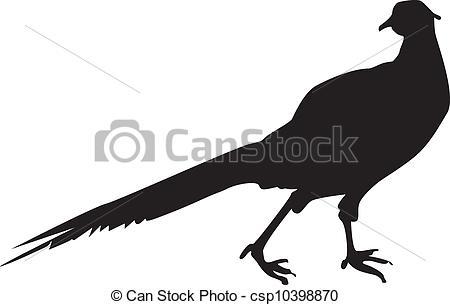 Pheasant clipart #14, Download drawings