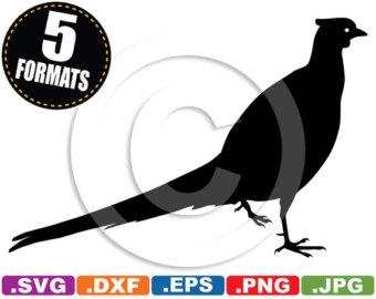 Pheasant svg #3, Download drawings