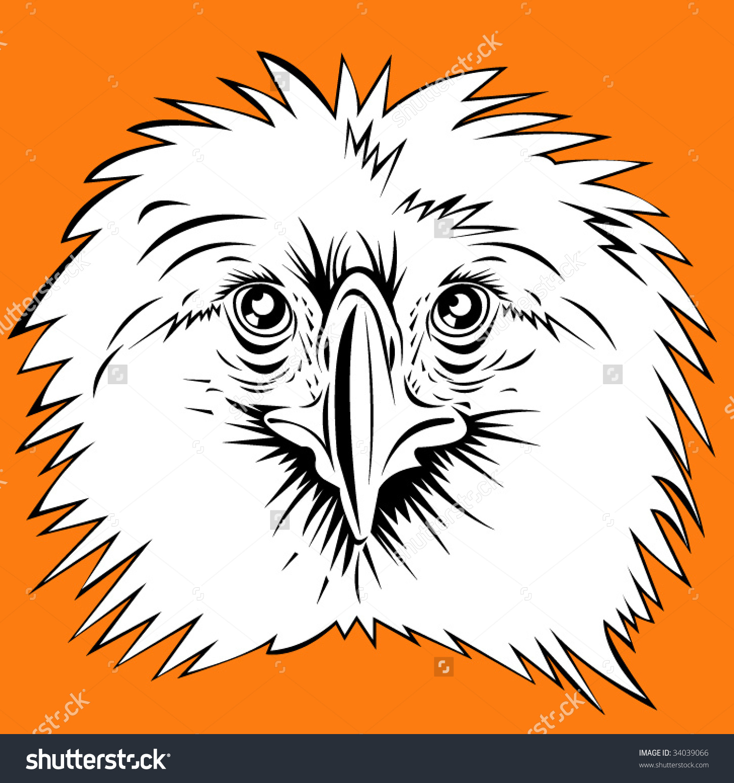 The Philippine Eagle clipart #19, Download drawings